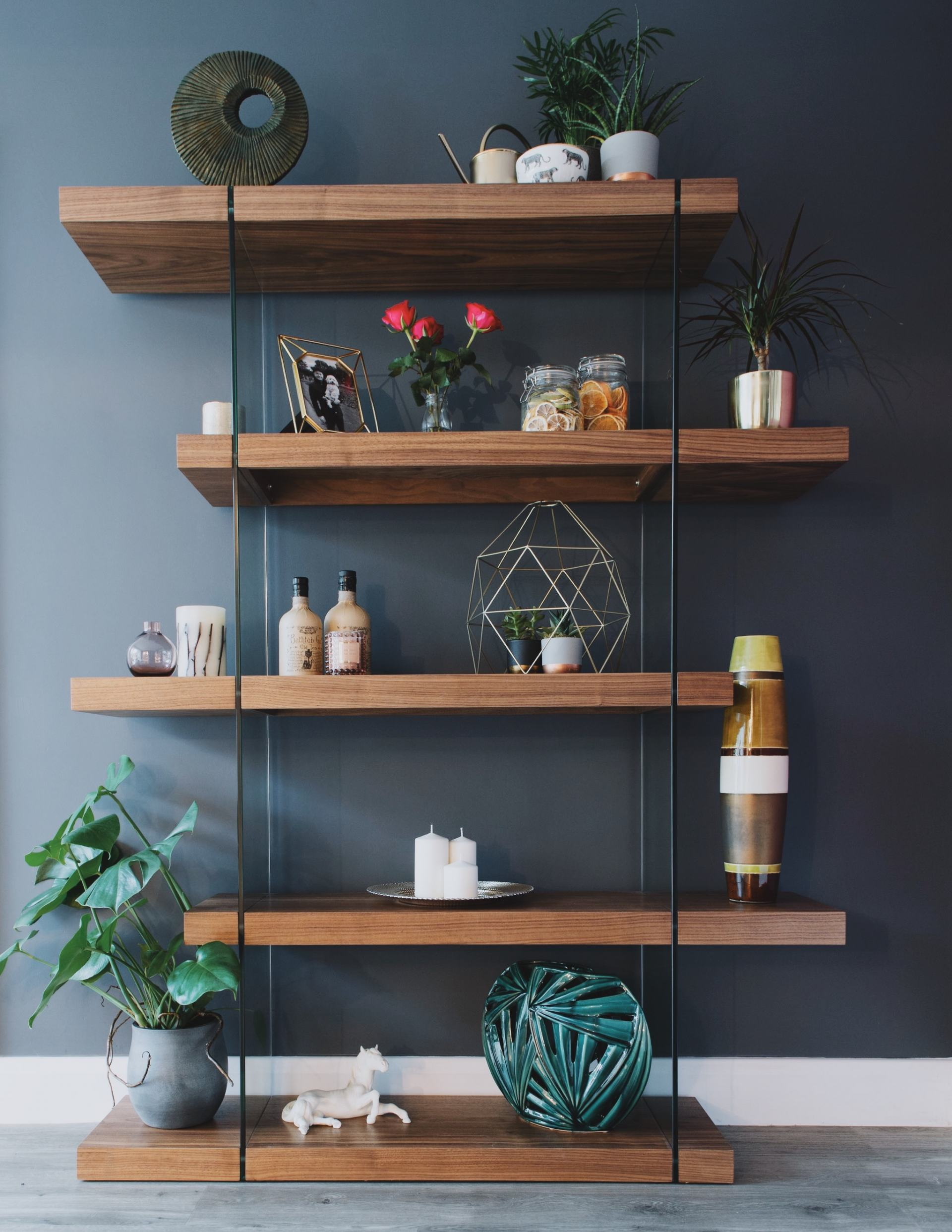 A bookcase displaying real plants and pictures with other artefacts